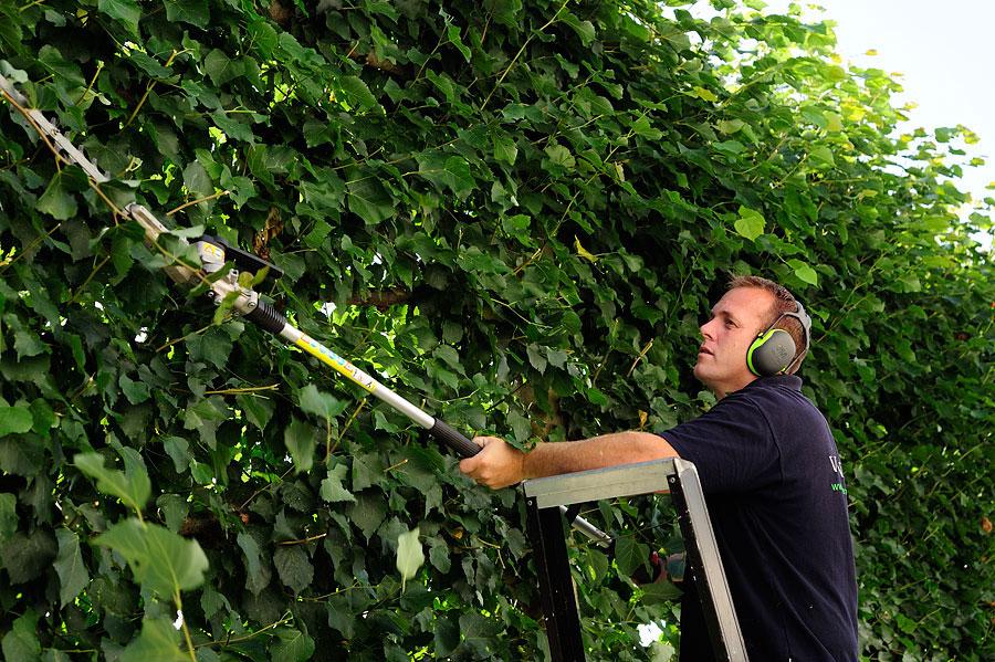 Projecten van ojen hoveniers uit nuenen for Tuinaanleg nuenen